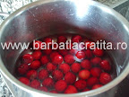 Tort de cirese cu budinca de vanilie preparare reteta