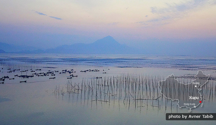 Xiapu - Mudflats and Traditional Seaside Life