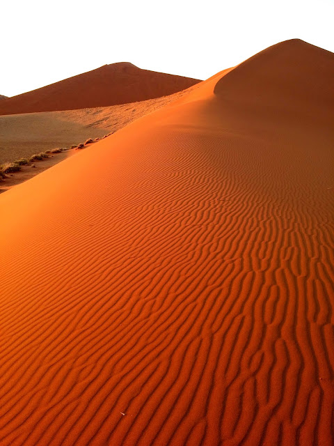Sunrise catching the sandy waves of the dunes in Sossusvlei