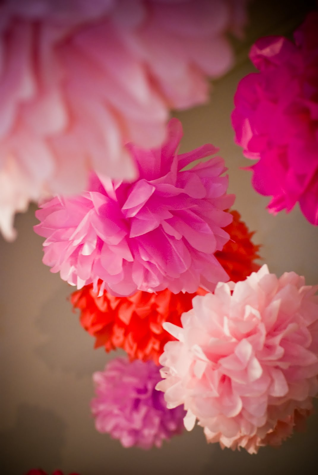 baltimore etsy street team Handmade Tissue Paper Flowers and Pompom Garland