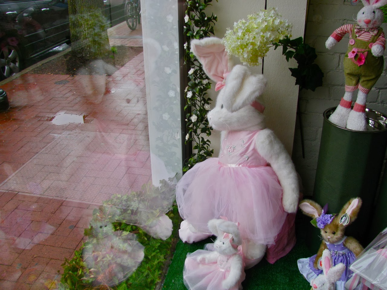Bunny Reflections in Springtime
