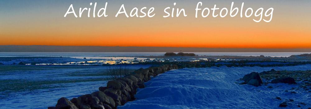 Arild Aase fotoblogg
