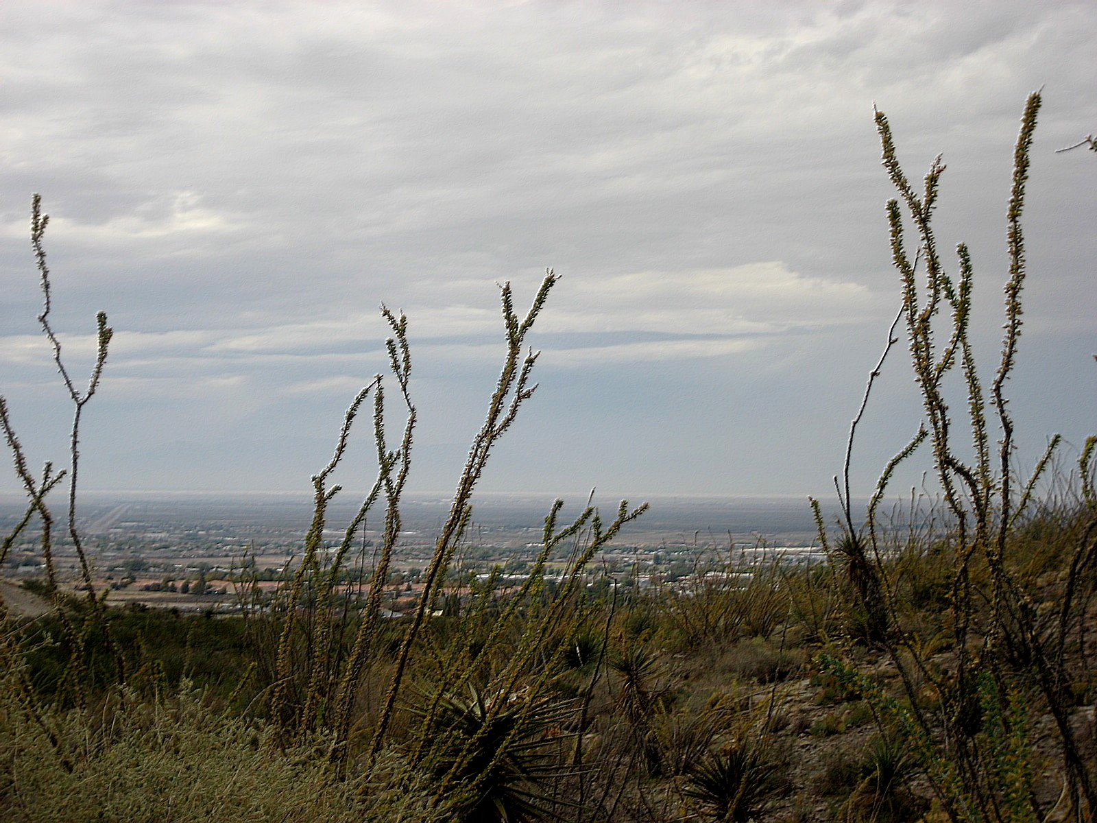 Living Rootless: Alamogordo, New Mexico: Scenes From Around