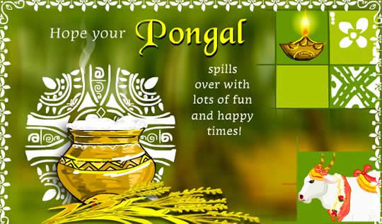 Free greeting cards download cards for festival mattu pongal pongal tamil greetings pongal greetings in tamil pongal in tamil nadu pongal holidays pongal festivals thai pongal greeting free pongal greetings m4hsunfo