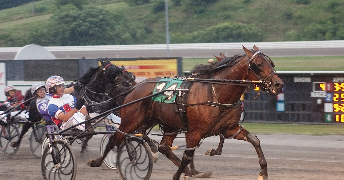 Twinspires Blog Cotolo's Harnessweekend Review 8111rhblogtwinspires: Harness King Free Picks At Elf-jo.com