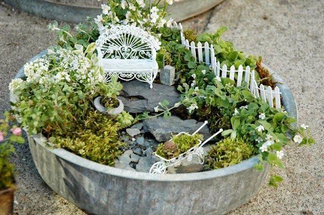 mini jardim terrario : mini jardim terrario:Faça o seu e, se gostou das dicas, deixe seu comentário aqui no blog
