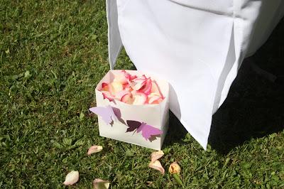 Streu-Tüten für Blütenblätter mit lila Schmetterlingen