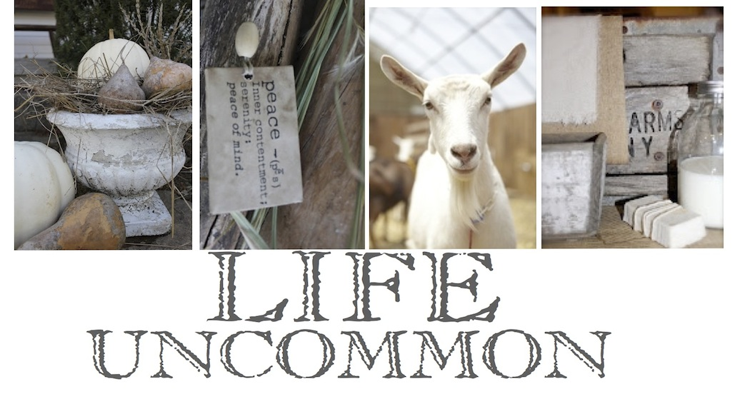 An Uncommon Life