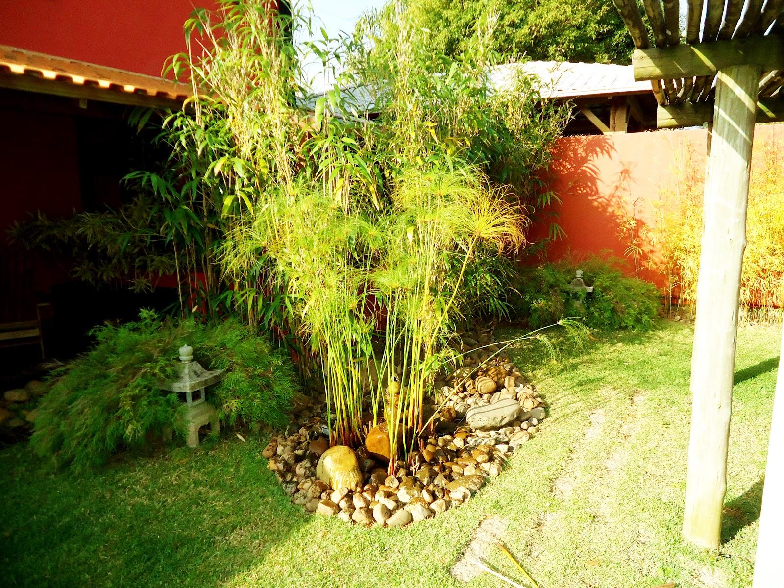 mini jardim oriental:TERRA PRETA = Paisagismo+Projetos+Manutenção de Jardins: Desenhos