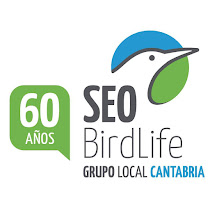 Grupo local SEO-Cantabria