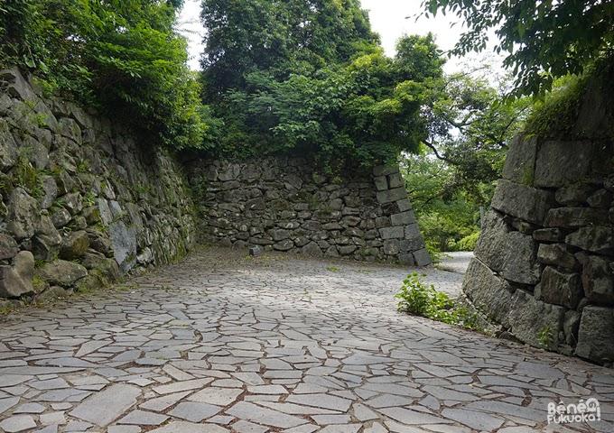 Château de Fukuoka, parc Maizuru