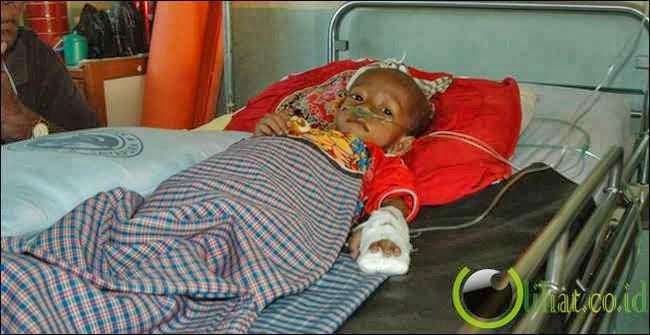 Malaria (2,7juta tewas per tahun)