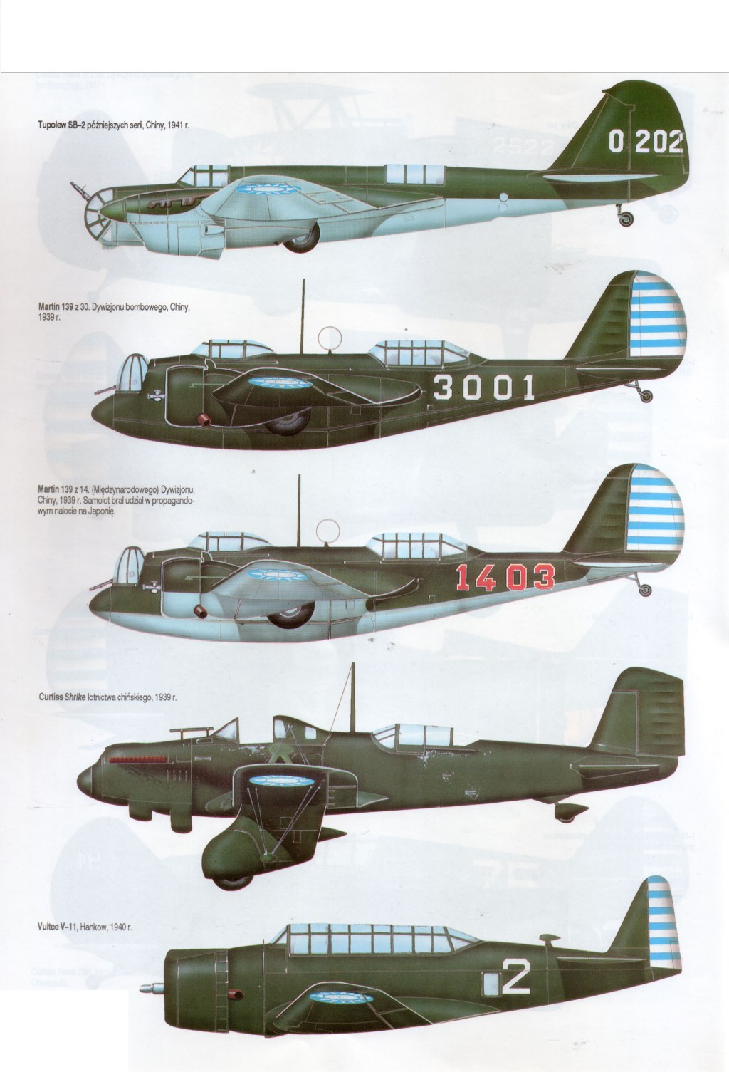 China-Burma-India WWII: CHINESE AIR FORCE