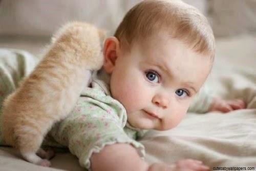 Image bébé mimi avec chat