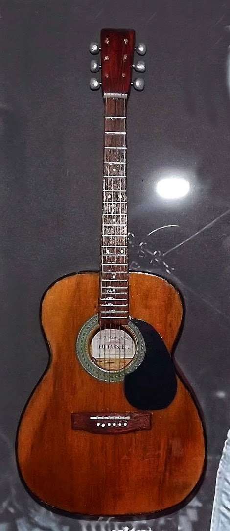 mini violão Martin Nando Reis