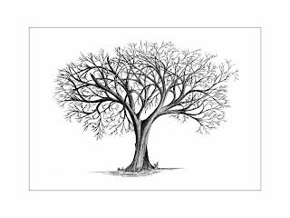 Dessin arbres - Dessiner un arbre ...