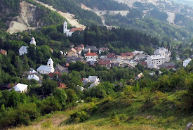 Save Rosia Montana (Rumanía)