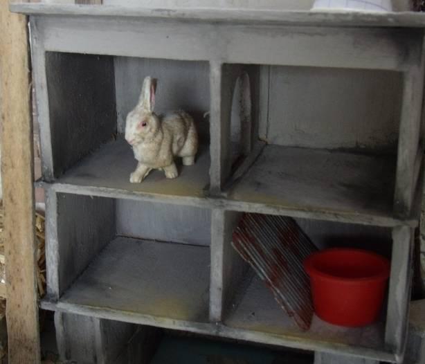 Patmo cr ations l 39 arri re cour les clapiers for Clapier lapin fait maison