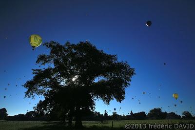 ballon arbre montgolfiere Chambley-bussière Lorraine Mondial Air Ballon