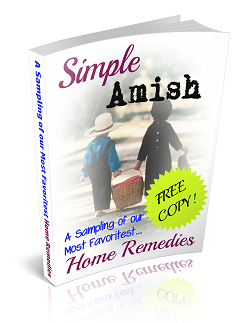 Visit Our Amish Home Remedies Blog!