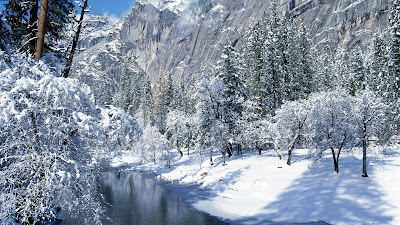 Winter snowfall beautiful Wallpaper