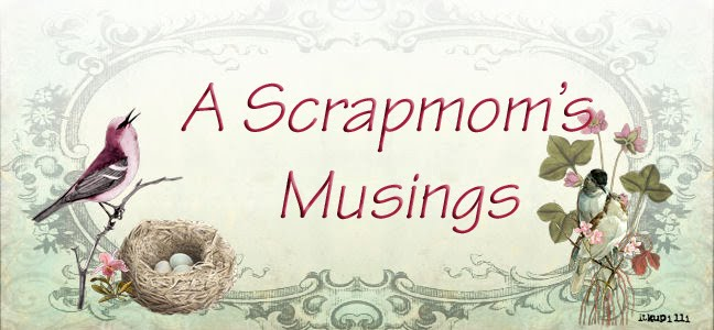 A Scrap Mom&#39;s Musings