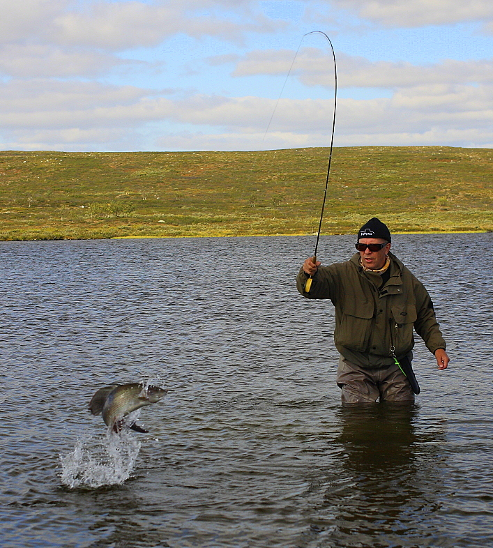 Fly fishing in finland for Fishing in finland