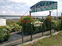 Изпълнение на Предварителните поръчки от директория Луковици за пролетно засаждане