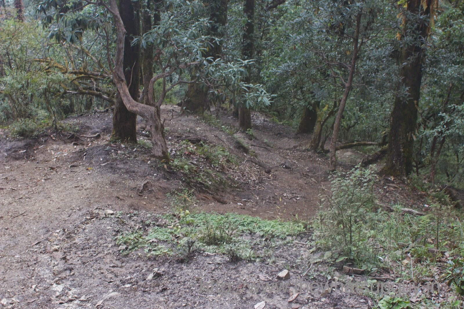 Shortcuts Roopkund Trek With India Hikes Day 6