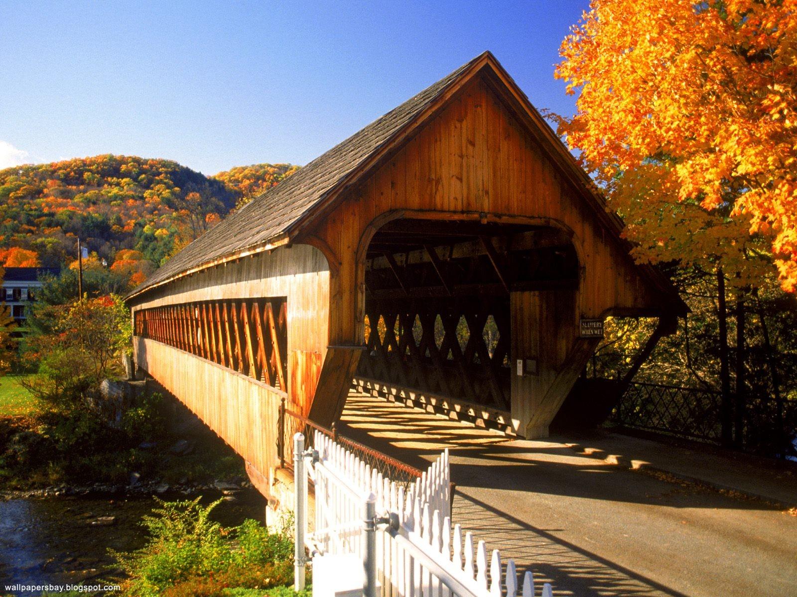 http://4.bp.blogspot.com/-mbCEl60-Pv8/Tsaf7D8NNlI/AAAAAAAACuo/W4g4tezTdXs/s1600/Autumn_Wallpapers_20.jpg