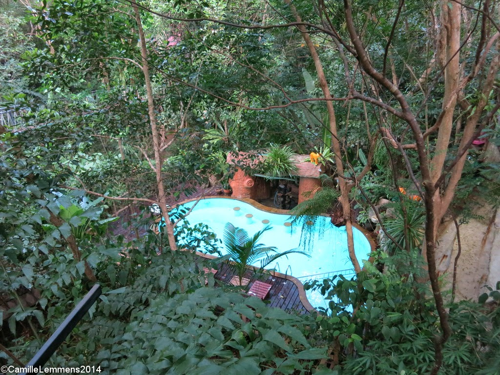 Khao Sok Tree House resort, Swimming pool
