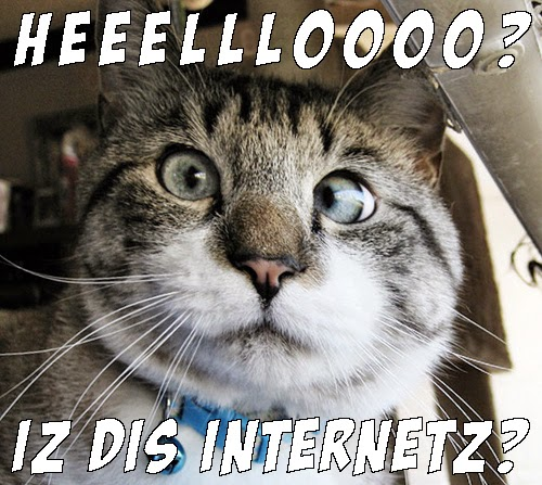 heeello dis internetz cat meme great cats be funny blog april 2015