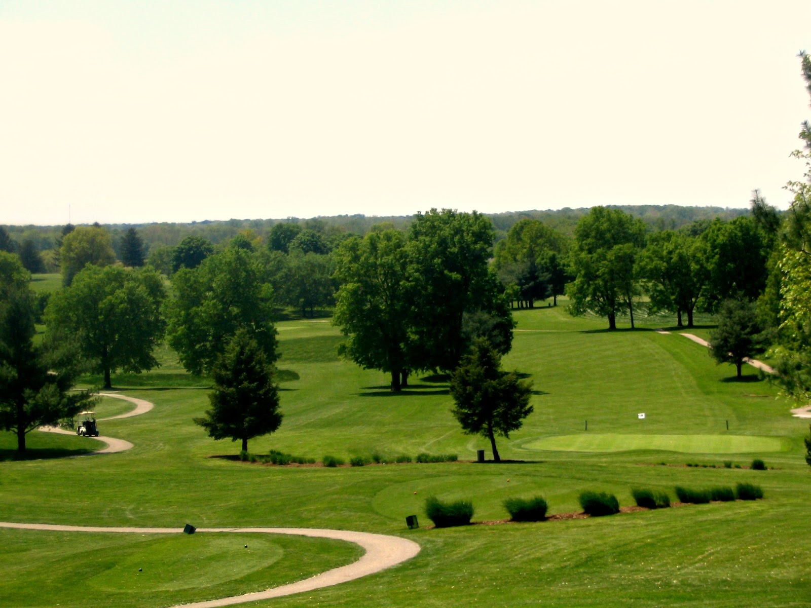 top 5 golf courses in indianapolis area