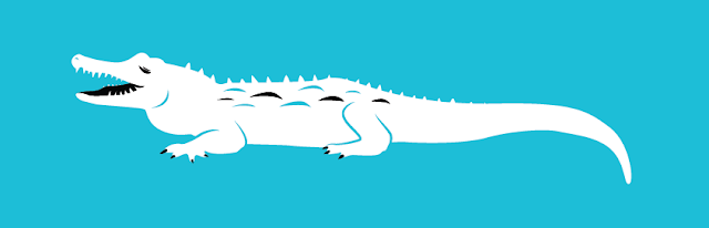vector illustration of a crocodile