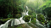 #23 Waterfall Wallpaper