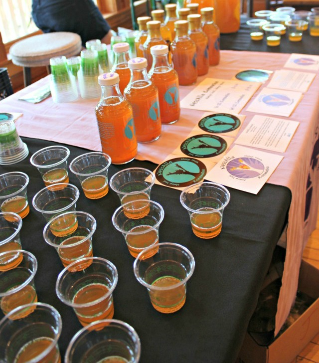 2013 Eat Local Resource Fair Milwaukee, NessAlla Kombucha tea