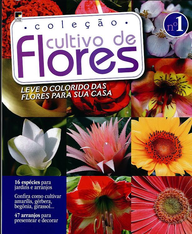 Revista Edição Nova , Com varias Ikebanas com participação do Prof Marcio Soares.