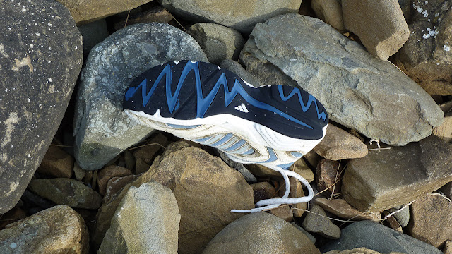 runner shoe amongst the rocks