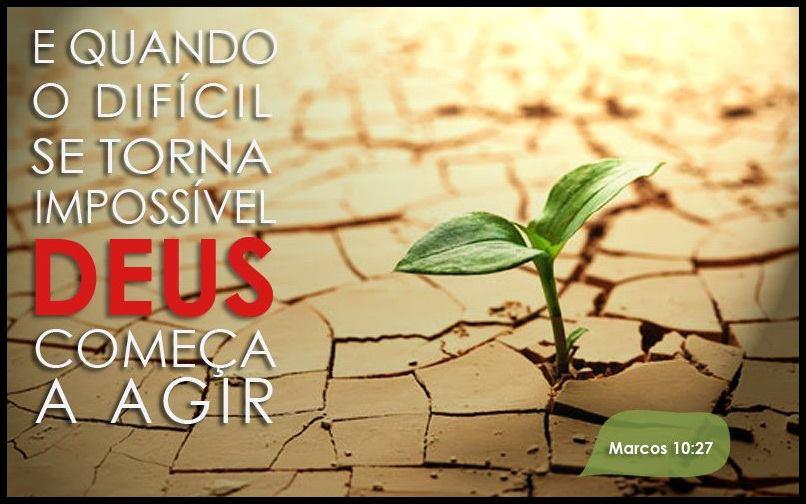 flores no jardim de deus: na bíblia durante os anos de ministério de jesus cristo houve