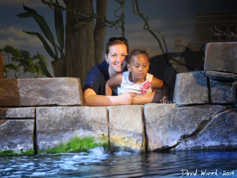 legoland aquarium, waterpark