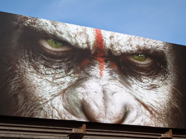 Dawn of the Planet of the Apes Caesar face billboard