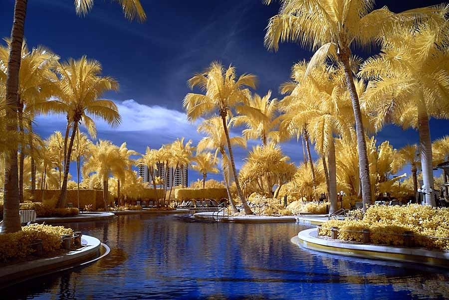29. Infrared Marco Island by Kathy Cavallaro