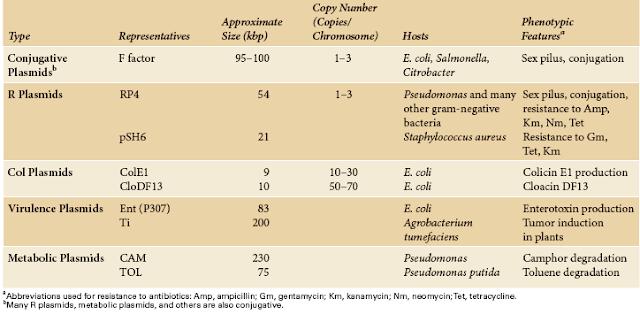 Types of  Bacterial Plasmids