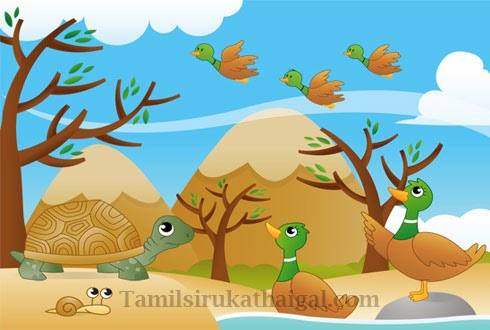 The Tortoise and the Ducks Story 2