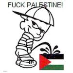 Kik azok a palesztinok,