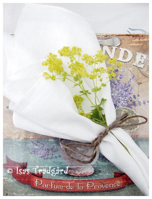 Enkel dukning i växthuset