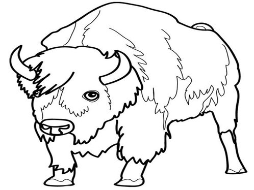 cartoon farm animal coloring pages for kids - Coloring Pages Cartoon Animals