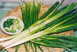khasiat bawang bakung