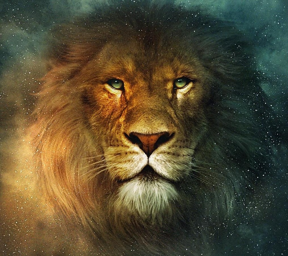 Download free attractive animated lion wallpapers for all tablet pcs