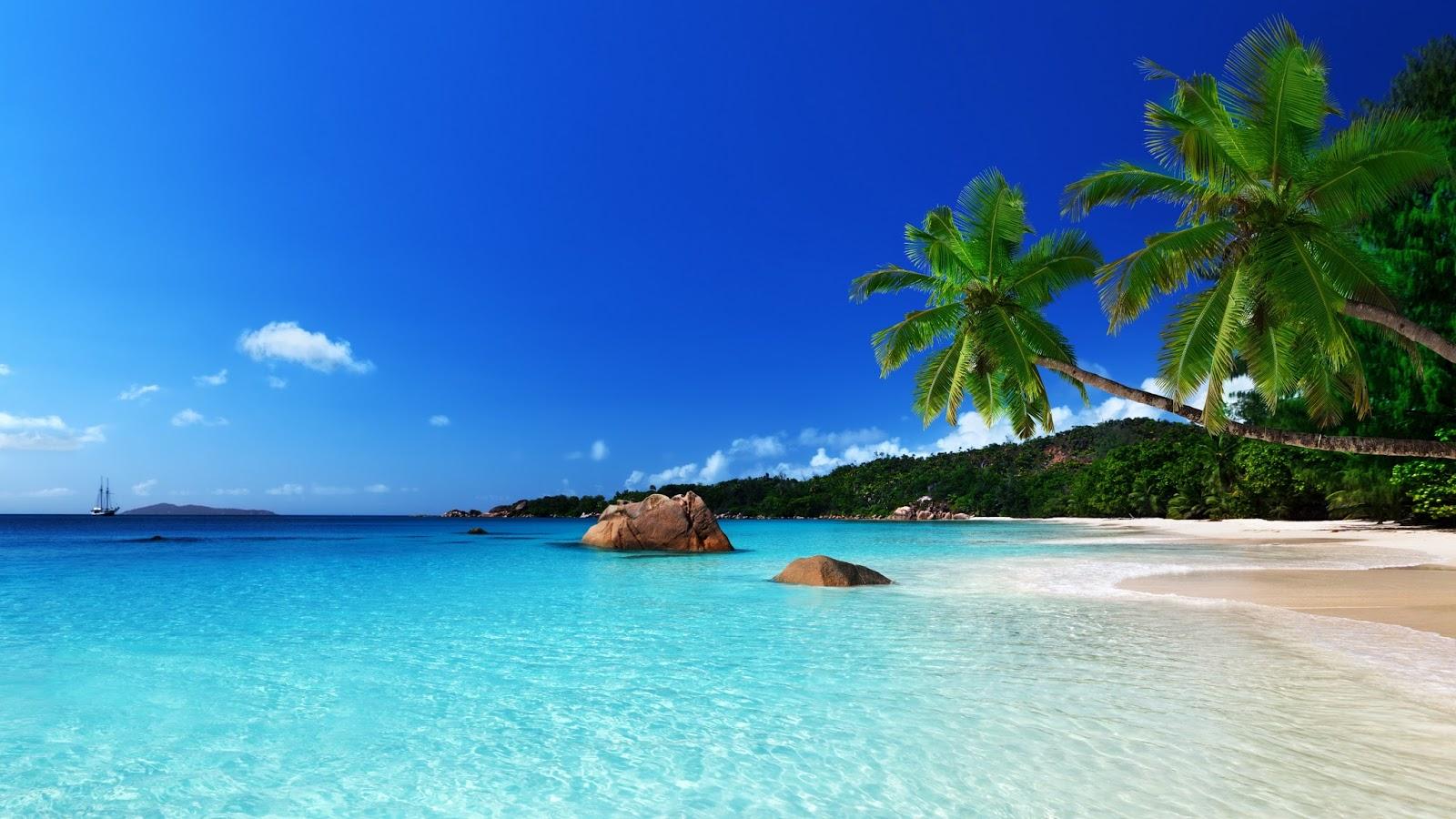 Banco de im genes 30 fotos de playas tropicales con agua for Beautiful beaches in la